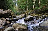 Wandern in der Buchberger Leite Bayerischer Wald